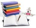 Ежедневник А5 в гибкой обложке с петлей для ручки