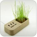 Эко-USB-разветлитель и кард-ридер с декоративным растением